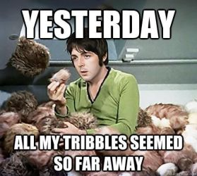 mccartney tribble